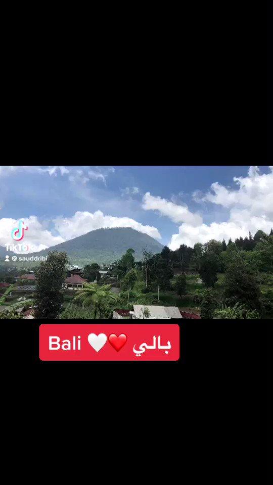 #إندونيسيا @Abu_Ziyad1973 @indo_pic @waleed_altasan @ali30575 @sliver_121 @z0or @indonesiaroad1 @B313996 @mrpsk83 @BaliLover4  @mFPPpxypdT8GWlC @Bali_Orchid