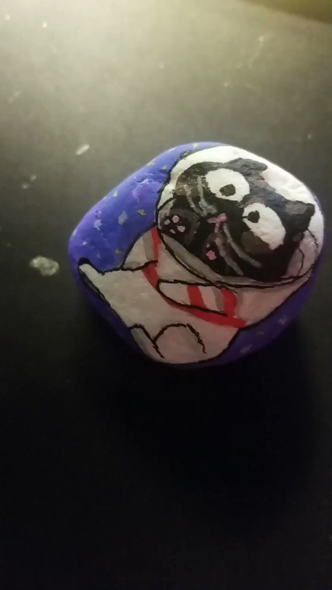 @pokimanelol @CashApp I painted a rock of my cat chilling in space $mojipants  #CashAppPoki