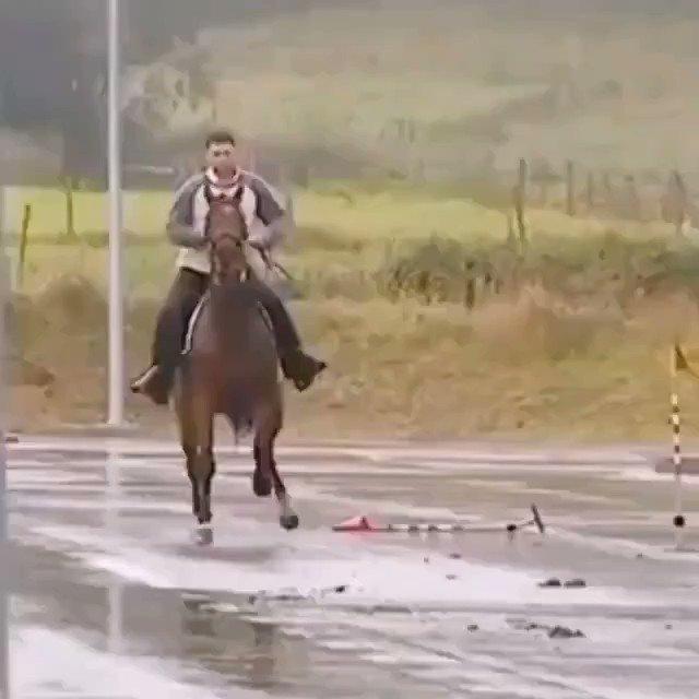 شاهد كيف يركض الحصان في الارضية الزلقة  !!
