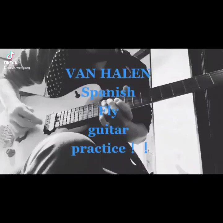 VAN HALEN★Spanish Fly guitarpractice #vanhalen #eddievanhalen #evh