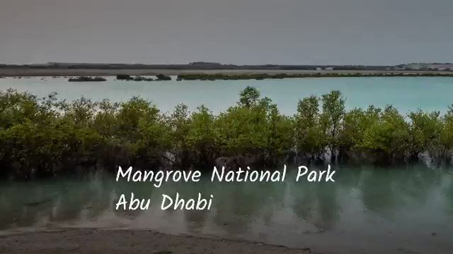 You're sure to enjoy the #WorldsCoolestWinter at the #JubailMangrovePark! A haven for avian & marine species, a sanctuary raising awareness of mangrove habitats & a spectacular meandering mangrove boardwalk with mesmerising views! #StaySafe #InAbuDhabi @TheEmirates https://t.co/1oG0DNrom7