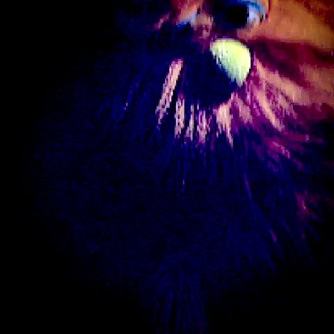 "MY NEW SINGLE: ""I may or may not be of the unicorn type, guest-starring Sir Jonbob""    #subpac #bass #unicornlife #spreadbass #music #feelingisbelieving #techno #goa #rave #hardtekk  #party #trance #festival #SUBPACLife #chiptunes #keephanselhandsome"