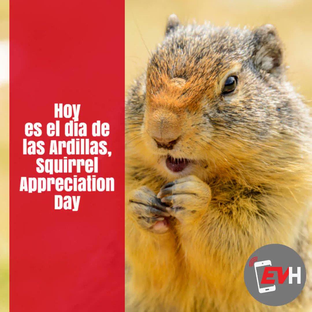 Que tengan un excelente jueves en lo que estén realizando, hoy es el día de las Ardillas, Squirrel Appreciation Day, seamos considerados con nuestra fauna local, cuidemos a los animales silvestres. #EnVivoHouston #EVH #ardillas #SquirrelAppreciationDay #BuenasTardes #BuenProvecho