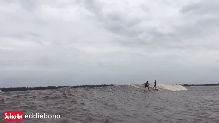 Bono river surfing 😎 full video 👇 https://t.co/Tqc2nE8mmR #bono #bonos #bonovox #bonovox #bonosurfing #river #riverlife #riverdale #riverlifestyle #surf  #surfista #surfislife #surfer #surfergirl #surfingphotography #surfingvideo #surfingmagazine #surfingbali #surfingindonesia https://t.co/hqJQsRYuwI