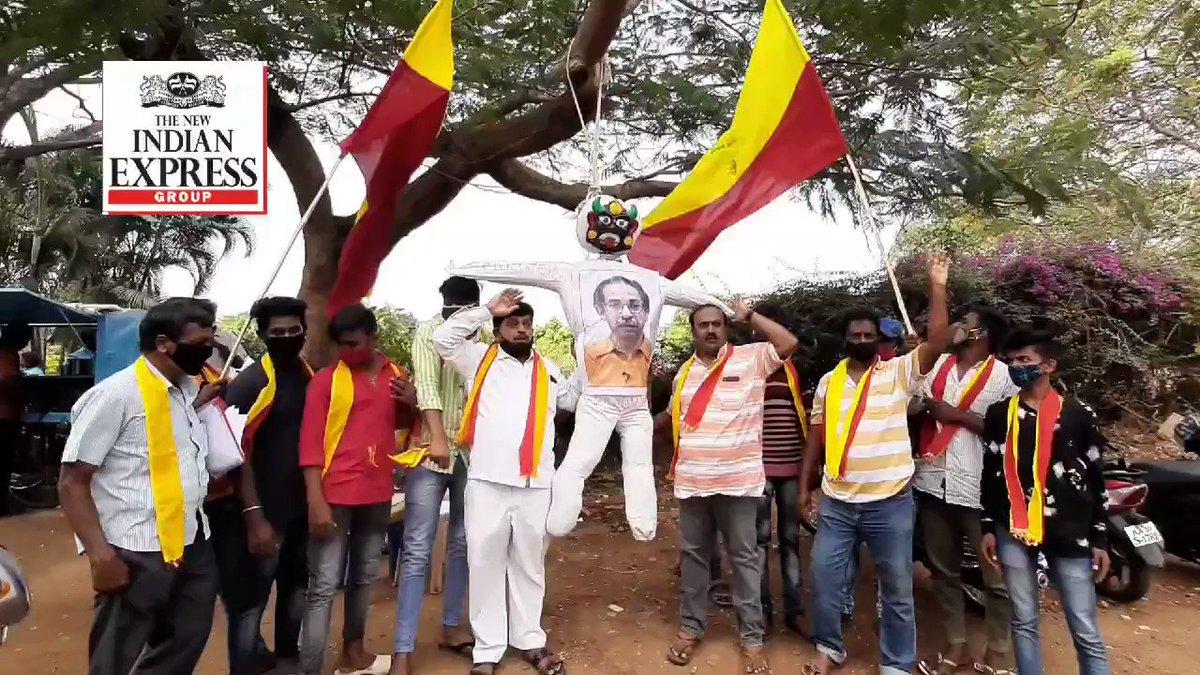 Kannada activists in #Mysuru staged protest and publicly hanged effigy of Uddhav Thackeray over his recent statements on border dispute.@NewIndianXpress @XpressBengaluru @santwana99 @ShivascribeTNIE @vinodkumart5