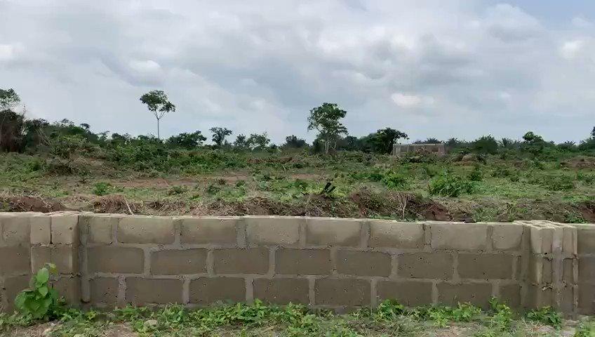 Dry Lands for sale at Zaam Estate in Adekoyemi Akore Ileshi Atan-Ota Ogun state for #1.5m - #2m. No Omoonile Call 09061924073  Jonathan Nigerian Army Harmattan #InScamWeTrust Ødegaard Biafra Suarez Atiku Abubakar Trent #Verzuz Tems What God #NSPPD Badagry Lagos #Ashanti #wizkid