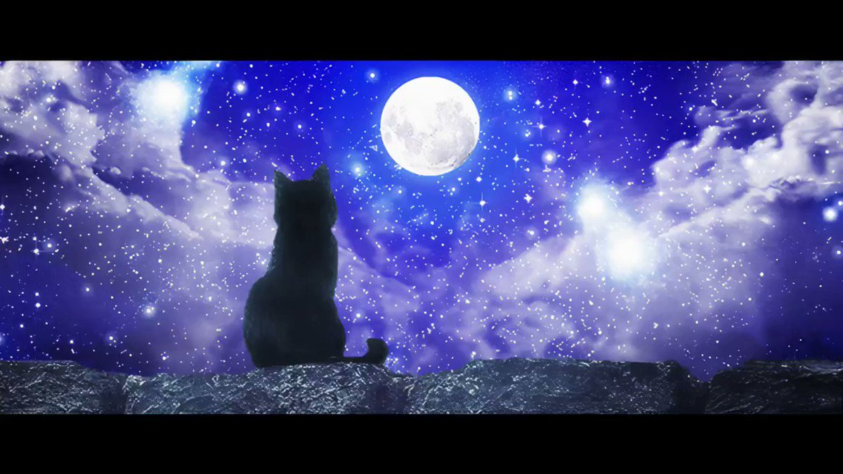 Wairaさん@waira_DG の曲に歌詞を付けさせて頂きました(*´ー`*)♡ 神秘的で、どこか切ないメロディー… 素敵な1曲なので是非聴いてみて下さい (*∩∀∩*)♪ MVにまさか黒猫ちゃんが居るとは嬉しいサプライズでした😍💕 沢山歌ってみて頂けたら嬉しいです (*ˊ˘ˋ*)。♪:*° #初音ミク #ボーカロイド