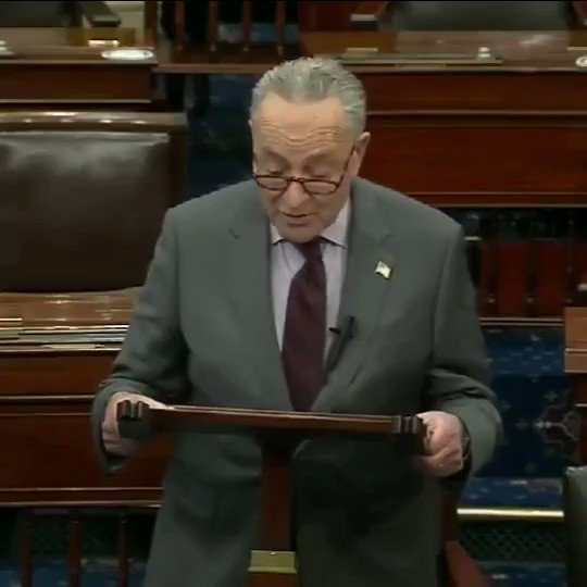 """SCHUMER: """"Senators will have to decide if they believe Donald Trump incited the ERECTION against the United States."""""""