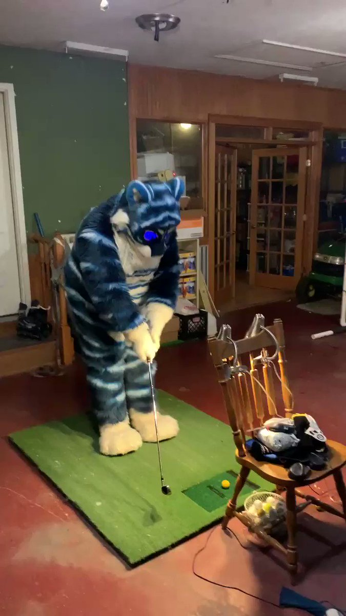 Passing the cold winters here working on my golf game. I have a relatively simple (read: not super accurate) golf simulator with an impact net I set up in the winter to stay loose. Happy #FursuitFriday     Ps: hitting a golf ball in suit is really difficult lol.   📸 @Hal188
