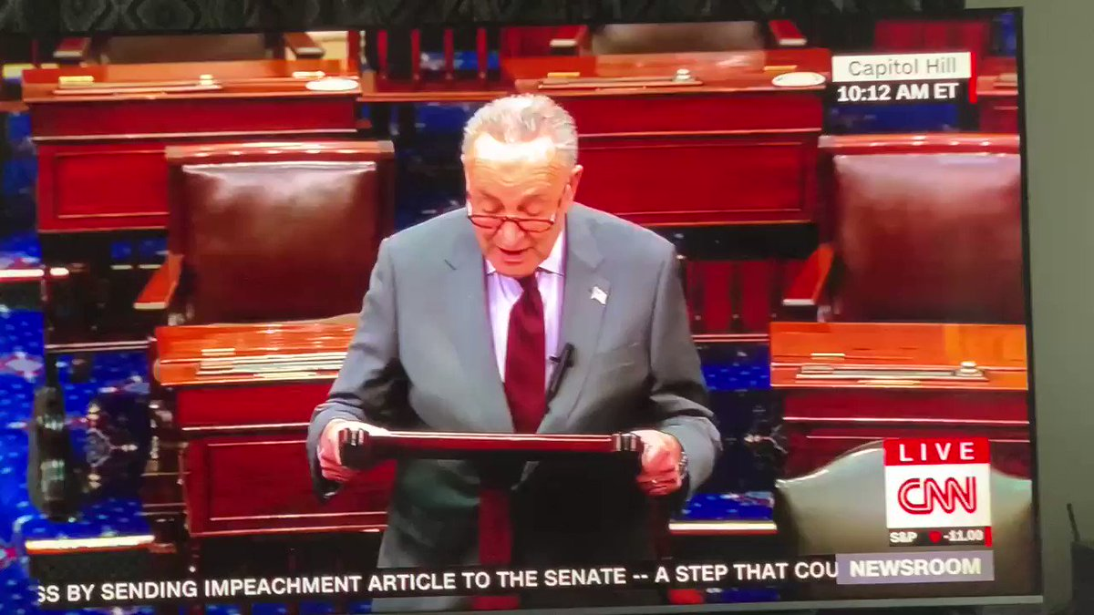 Schumer said Trump incited the erection against the United States. I hope it stands up in court!