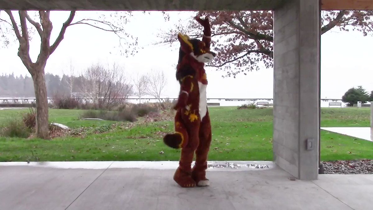 Didn't really know this song, but it's good to try new things sometimes! #FursuitFriday