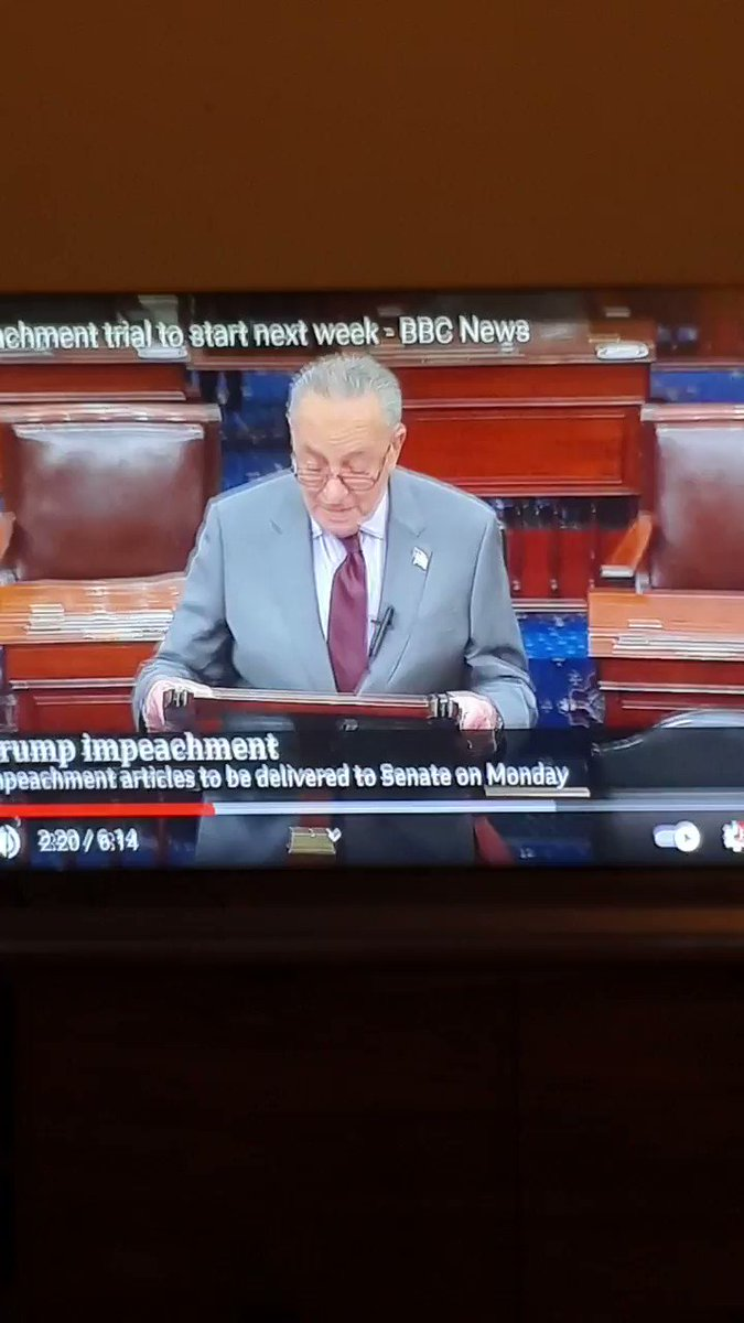 Did this actually just happen? I had to replay it 3 times - never thought I'd hear the words #DonaldJTrump and #erection in the same sentence 🐭😳 #insurrection #erectioninsurrection #Trump #ImpeachmentDay