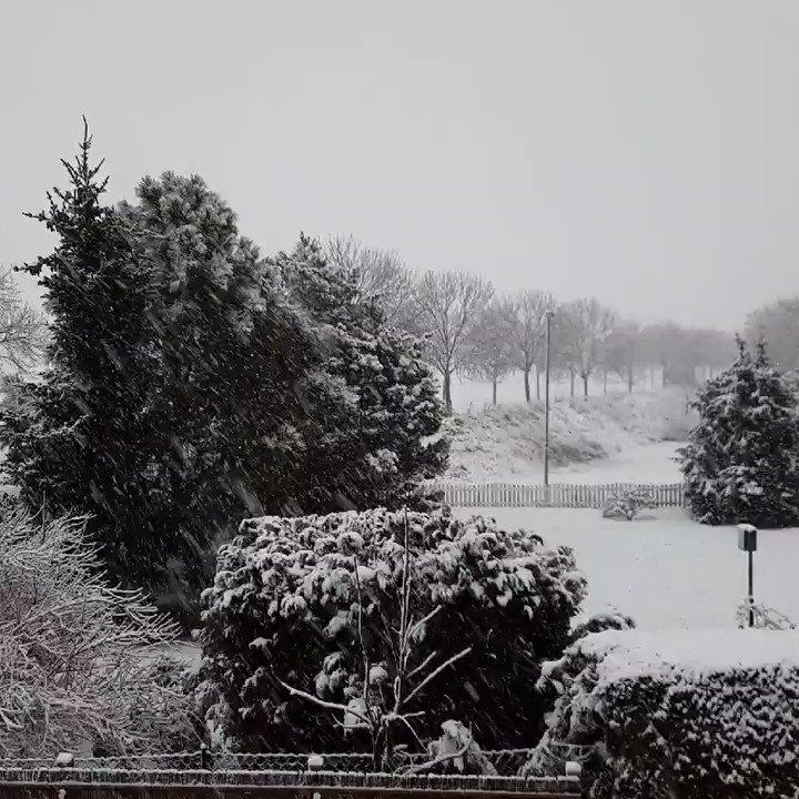 Hier der Beweis alles weiß 😅🤣🙈die Flocken werden immer größer 😅❄☃️ #schnee #winter