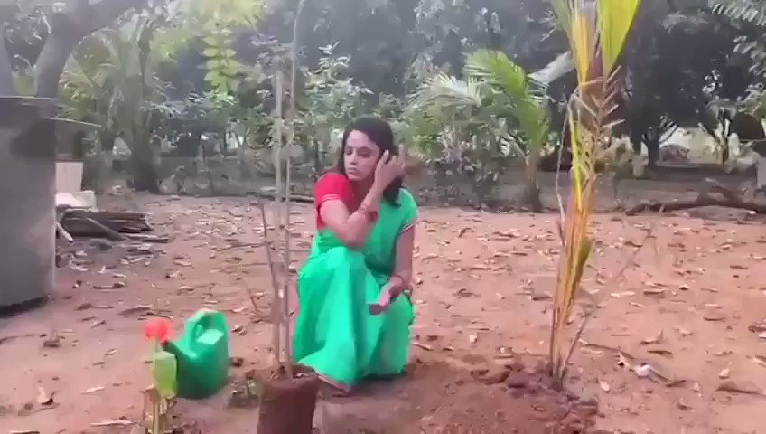 . @Nanditasweta accepted #HaraHaiTohBharaHai #GreenindiaChallenge.  Inspiration from @MPsantoshtrs Planted 3 saplings.🌱  Further, She nominated @actor_Nikhil @aishu_dil & @PrasanthVarma to plant 3 trees & continue the chain.  Specially thanked @MPsantoshtrs for this initiative.