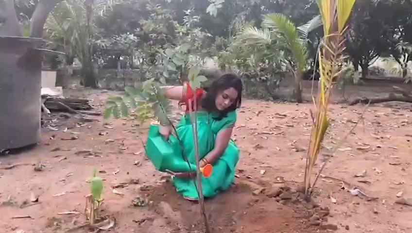 స్వతహాగా గ్రీన్ ఇండియా ఛాలెంజ్లో పాల్గొన్న హీరోయిన్ నందిత శ్వేత @Nanditasweta #HaraHaiTohBharaHai #GreenindiaChallenge  @MPsantoshtrs @actor_Nikhil @aishu_dil