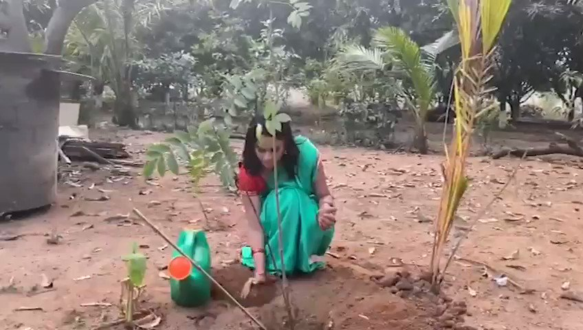.@Nanditasweta accepted #HaraHaiTohBharaHai  Inspiration from @MPsantoshtrs Planted 3 saplings. Further She nominated @actor_Nikhil @aishu_dil @PrasanthVarma