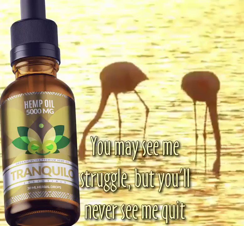 TRANQUILO HEMP OIL ⭐️⭐️⭐️⭐️⭐️ #lakecityfl #wednesdaymorning #sanfrancisco #californianlove #usvets #naturalanxietyrelief #ptsdtherapy #floattherapy #fitnesstyles #NaturalBeauty #TherapySessions #marine #VeteranOwnedBusiness #NavyWeek #VeteransDay