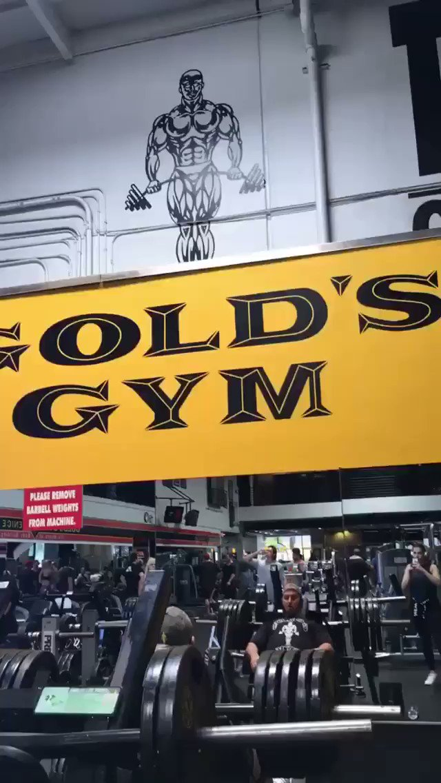 #Throwback A week of Training at @GoldsGym ...can't wait to go back someday!!  #bodybuilding #fitness #gym #workout #motivation #training #gymlife #muscle #lifestyle #gymmotivation #follow #bodybuilder #personaltrainer #powerlifting #fitspo #love #strong #gains