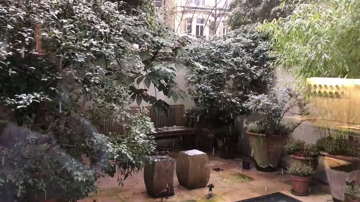 Here it comes... 🎵let it snow, let it snow, let it snow🎶 enjoy!  Neige à Londres après un superbe lever de soleil!  #London #ÇaSePasseMaintenant #picoftheday