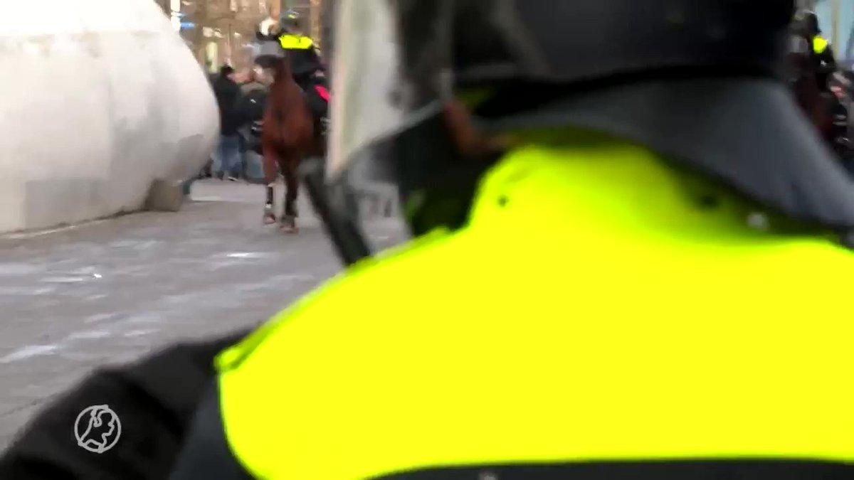 Politiepaarden gaan onderuit bij confrontatie met demonstranten in #Eindhoven @HartvNL https://t.co/AvI8A7FK3r