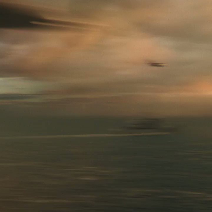 Assista agora o tão esperado trailer oficial de #GodzillaVsKong, breve nos cinemas