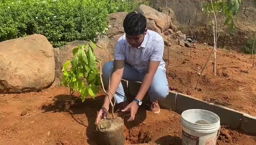 I've accepted #HaraHaiTohBharaHai #GreenindiaChallenge On my birthday with inspiration of @MPsantoshtrs garu planted 3 saplings and now I request all to plant saplings on thier birthdays or any best occasions to continue greenery., great going sir along with my father @raghavtrs