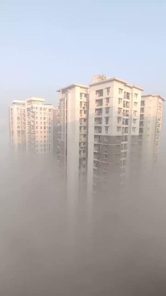 दिल्ली के लिए रास्ता साफ देख कोहरा सूरज सरकार की आज्ञा का उल्लंघन कर नोएडा में अनिश्चितकाल के लिए धरने पर बैठ गया  # कोहरा #noida #sun #weather #strike #stayhome #safedriving