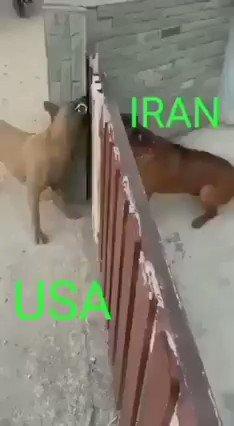 حقيقة الصراع بين #أمريكا و #إيران