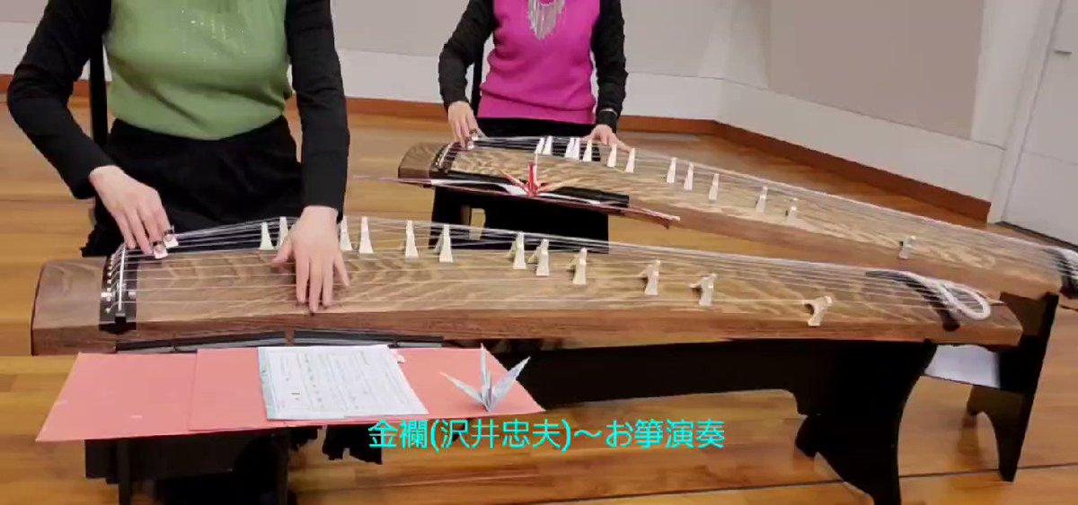 金襴(沢井忠夫)~お箏演奏!金襴(沢井忠夫)箏曲演奏してみました。華やかな曲です❤️お箏経験のある方にとっては懐かしい曲ではないでしょうか😊全演奏の動画はリプのYouTubeからご覧くださいませ🎵#お箏 #演奏 #弾いてみた
