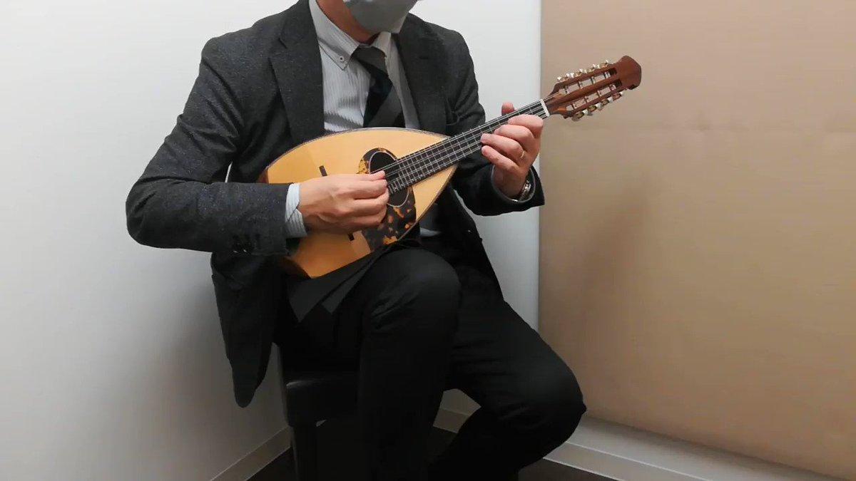 石川マンドリン M-4カラーチェ16bisなどで人気の高い深型ボディを採用し、音色に深みを持たせた作品。リブ彫り込みにより、抜けの良い音色を実現しております。実際に演奏してみたところ、高音の伸びはもとより、低音の心地よい響きが演奏者を虜にします!ぜひお試しください😄#マンドリン