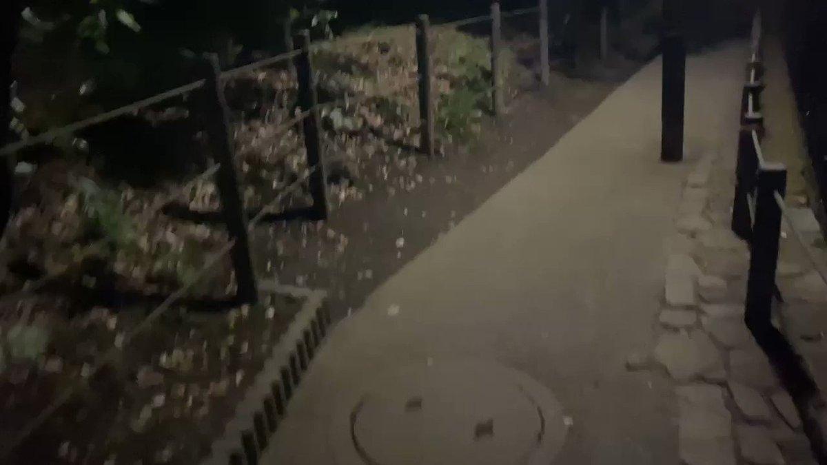 ヒデ、あいり、ソウかTikTokライブ生配信やってるとこにサプライズで凸しました!この真っ暗な道をひとりで歩いた…後悔した。でも編集があるので、すぐ帰りました(°Д°)