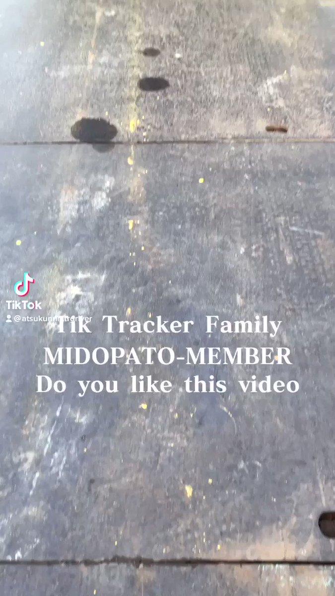 TikTok最新動画