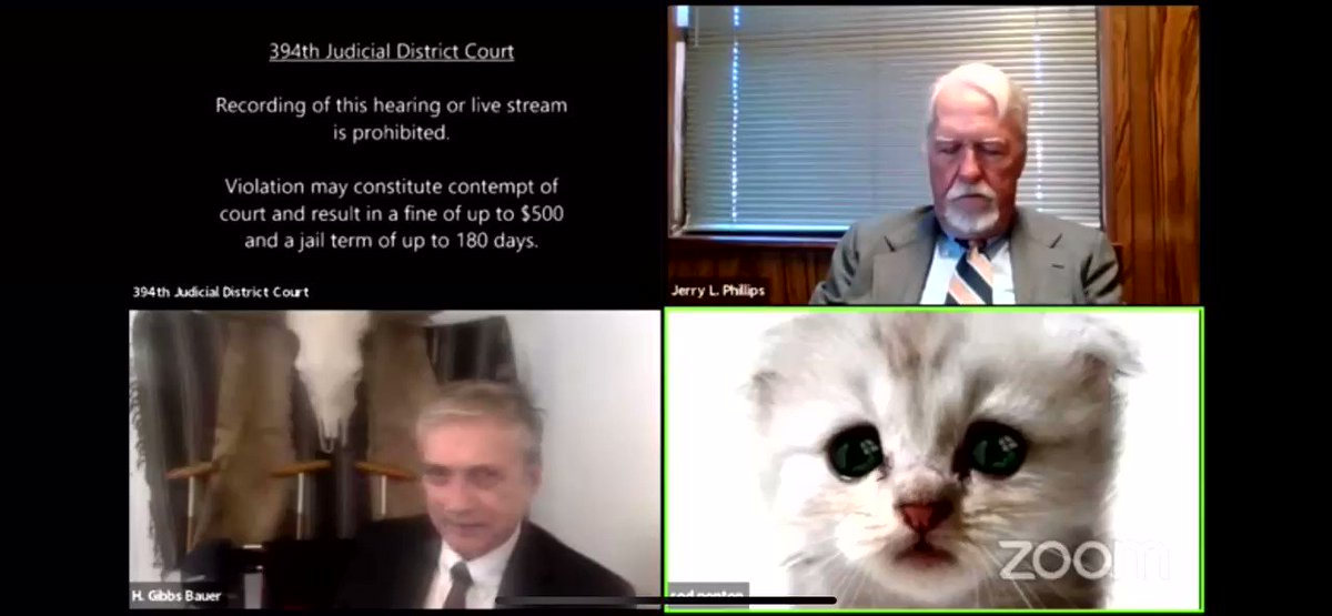A lawyer using Zoom had to let a judge know that he wasn't a cat after inadvertently activating a face filter https://t.co/vChc14mjM1