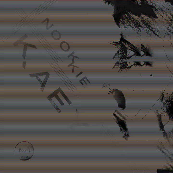 Proudly announcing the first @djNookie single on Metalheadz. Pre-order now via the link below and lock into @BBCR1 tonight from 22:00 GMT to hear @petetong playing the Rage Mix as his #EssentialNewTune 🔊  backl.ink/kaeya