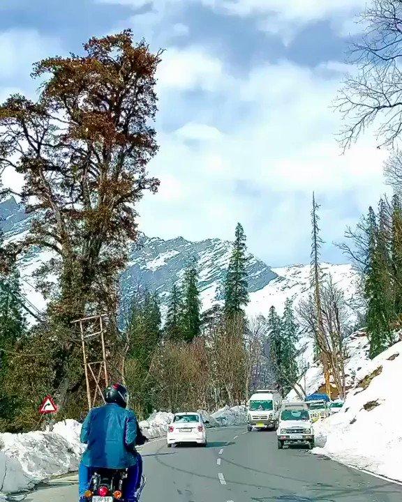 Dear Self... 🤗 ❤️  🎥 @bunnyhike  #crazywanders to get fe@tur€d .  . . . #escapeplans #manali #shimlamanali #shimla #tosh #kasol #mcleodganj #triund #manikaran #himachal  #tripotocommunity #mountains #kheerganga #nainital #rohtang #leh #laddakh #trekking #indiatourism