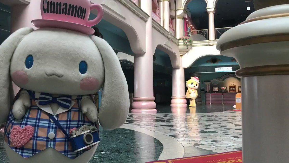 シナモンちゃんとまた一緒におままごとしたいですっ☆ちぃたん☆ですっ☆  Let's play again!  #サンリオコラボ