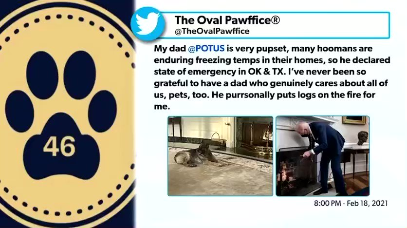 Hey friends. Your help in righting a wrong is needed. @TwitterSupport wrongly suspended @TheOvalPawffice because the dog haters at @newsmax falsely stated they were claiming to be official White House. They specifically stated on bio they are not. Reinstate @TheOvalpawffice