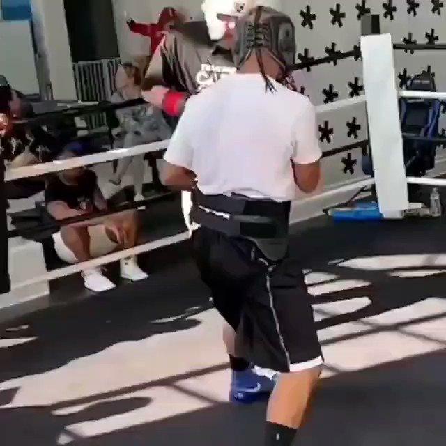@jakepaul's sparring. What do you think???   (📹 Via: @jakepaul / @boxinghighs)   #jakepaul #sparring #videos #ufcfightisland #KO #mma #ufc #boxing #bjj #muaythai #kickboxing #jiujitsu #fitness #martialarts #wrestling #fight #grappling #karate #fighter #training #mmafighter
