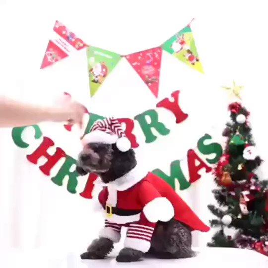 👣👣👣 【1-40kg】クリスマス ストライブ サンタクロース服 秋冬 保温 防寒 ペット用品 犬 ネコ ペット服 👉👉👉商品詳細ページへ: #韓国系ファッション #ファッションコーデ  #犬服 #ペット用品 #ペット服 #ネコ #クリスマス