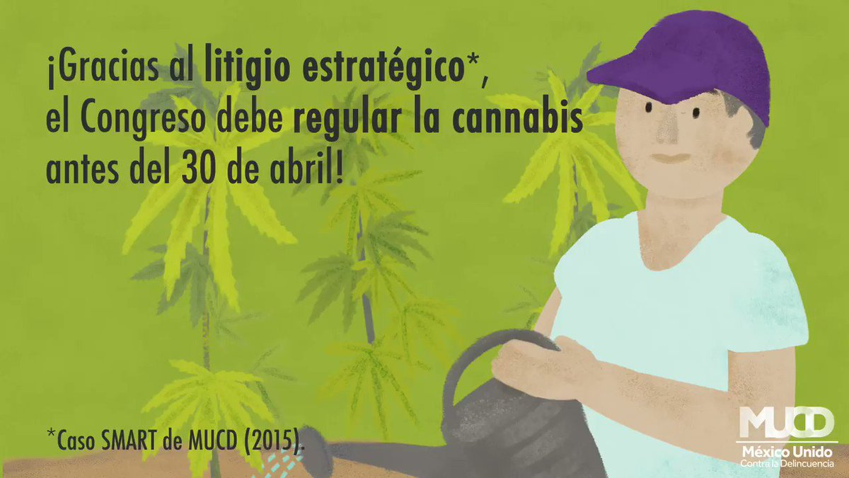 Image for the Tweet beginning: El día de hoy la
