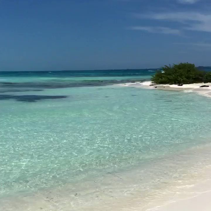 #tbt to the beautiful lighthouse beach in Cancun 🌊🌴🏖 #Cancun #beach #playa #CaribbeanSea #MarCaribe #PuntaCancun #tropical #Mexico
