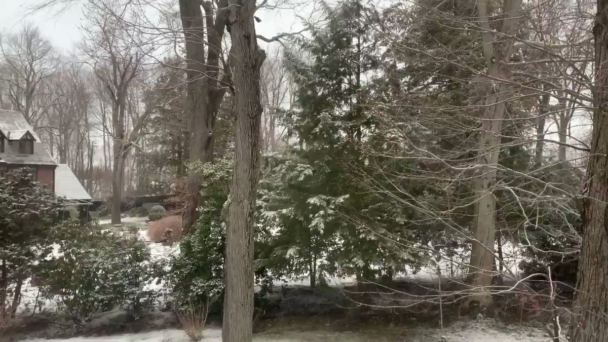 A light, accumulating snowfall in West Hartford #weather #snow #ct #conn #connecticut #westhartford #whartford #hartford #weha #snowflake #snowflakes