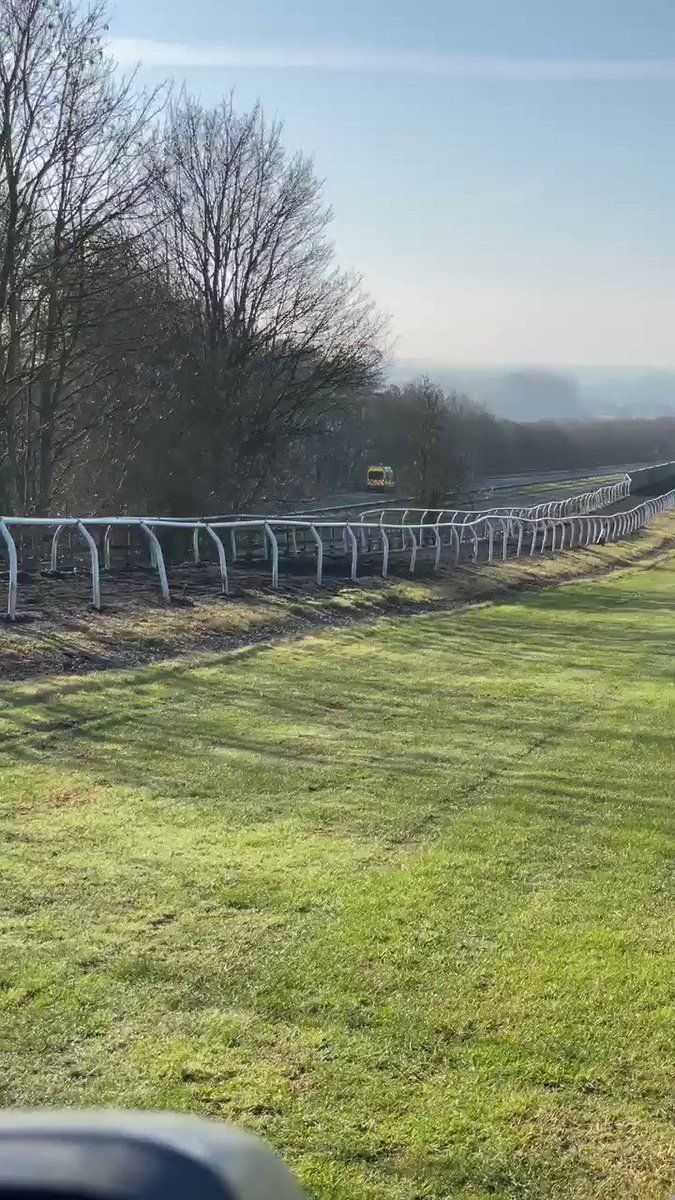 Gallop watchers this morning 🙈