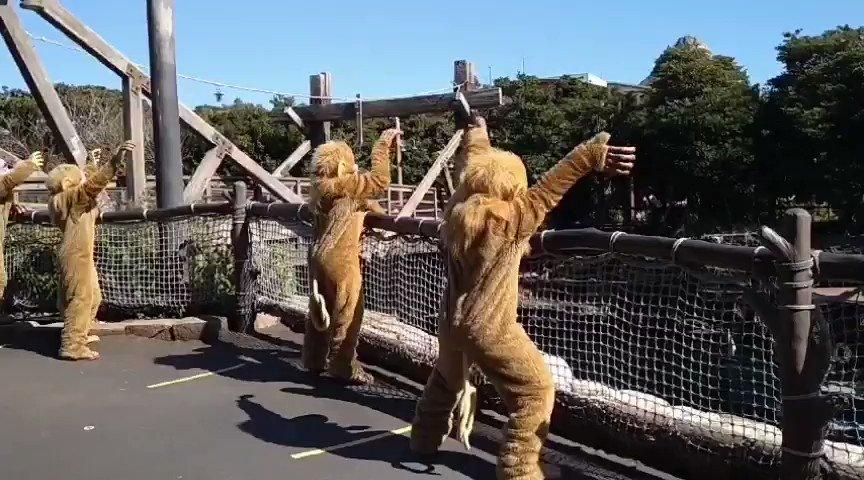 おはようございます✨😊 すこしづつ☀太陽が明るくなってきた 埼玉🎶😲 本日も昼からお仕事😂💦 船に手を振るお猿どうぞ。 #Disney