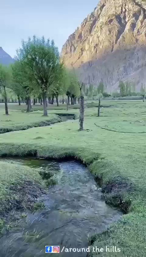 Mother Land ❤️ Phandar Valley Ghizer  @GHIZERNEWS @TeamGhizer @TGhizer @WaheedRehmat @LoopTravels @TravelGilgit @TravelGilgit #OurBeautifulGhizer #gilgit_baltistan #gilgitbaltistan #adventure #PhandarValley #beautiful #NaturalBeauty #travelphotography #Travel #Ghizer