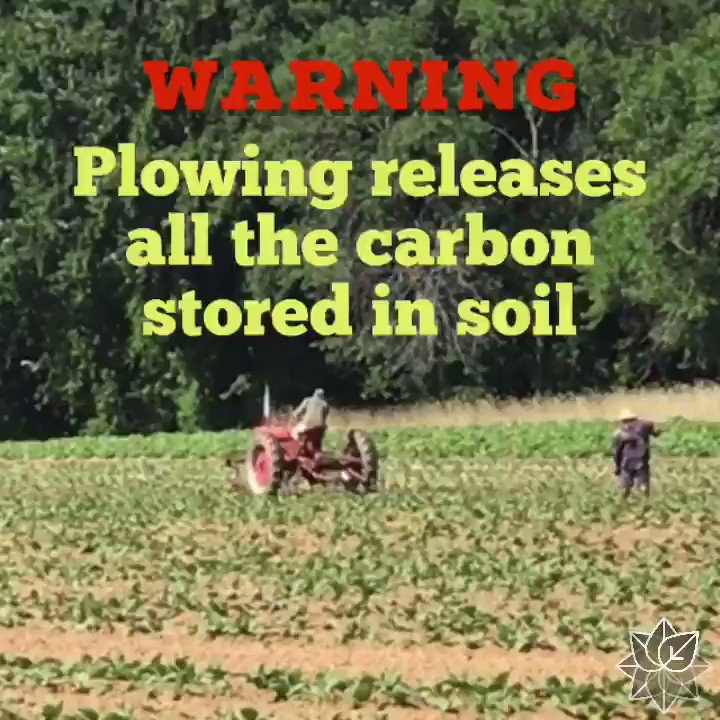 Soil health is EVERYTHING to our survival (& planet's survival)  Rule #1, NEVER plow #soil. All the carbon gets released  Plowing leads to soil degradation😞  #soil #soilhealth #carbon #carbonstorage #globalwarming #climate #climatechange #l#esgmark #love #happy #friends #family