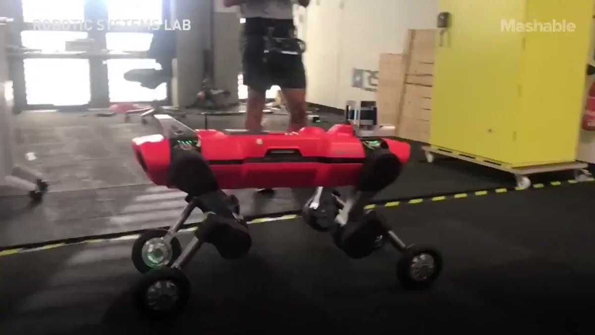 Wheels could be a better option than feet for some #Robots by @mashable  #Engineering #Robotics #AI #DeepLearning #Innovation  Cc: @rudyagovic @dirkschaar @space_mog https://t.co/g3pfGxvuyJ