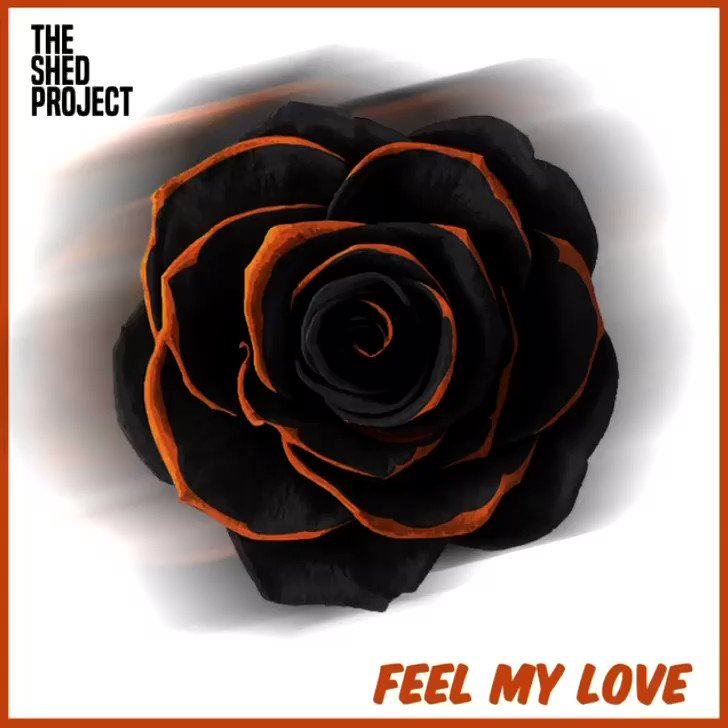 'Feel My Love' by The Shed Project @project_shed In my opinion, the best tune they've done, great song and some fantastic artwork to go with it 👌 Added to Best of Upcoming Bands Hub Playlist 💛 open.spotify.com/playlist/6rGhk… #UpcomingBands #NewMusic