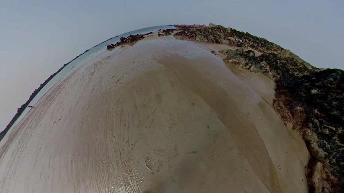 À marée basse les rochers se prélassent au soleil et rêvassent en sommeil... #sea #sun #sand #spring #beach #armor #mer #plage #bretagne #printemps #COVID19 #coronavirus #confinement #lockdown https://t.co/SJikoLczpO