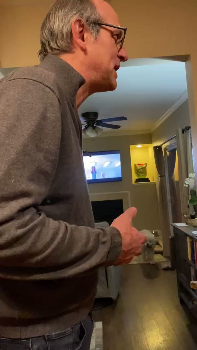 @thelaurengraham @kathryng My dad talking on FaceTime to his sister about his love for @thelaurengraham and @GilmoreGirls is so pure🥺😂💗 she's gonna watch it now!! :) #GilmoreGirls #Netflix @KeikoAgena @seangunn @alexisbledel